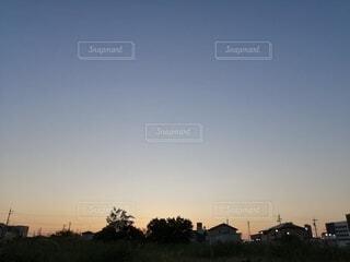 空,屋外,雲,夕暮れ,樹木