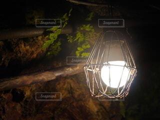 緑,植物,暗い,レトロ,照明,洞窟