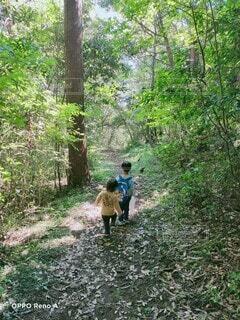 森の中に行く探検隊の写真・画像素材[4928574]