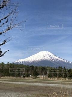 富士山の写真・画像素材[4929159]
