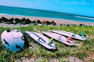 空,屋外,サーフィン,サーフボード,ビーチ,ボート,カヌー,水面,草,パドル,水上バイク,スポーツ用品