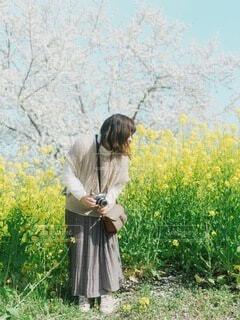 女性,花,春,菜の花,人物,人,ポートレート,フィルム,フィルムカメラ,エモい