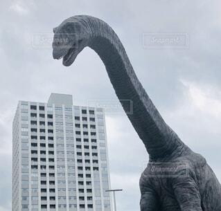 迫り来る恐竜の写真・画像素材[4931790]