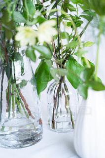 花,花束,花瓶,観葉植物,草木,ボタニカル,おしゃれ
