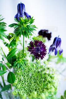 花,緑,花束,草木,ボタニカル,おしゃれ,フローラ