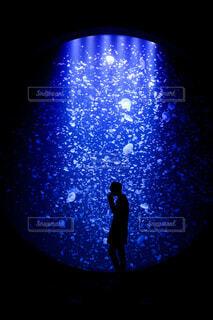 青,水族館,暗い,人物,人,クラゲ