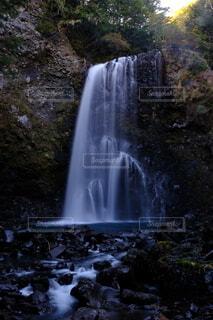 森の中の滝の写真・画像素材[4953916]