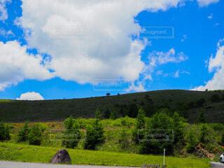 山道に広がる自然と青空の写真・画像素材[4953924]