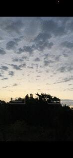 朝の空気の写真・画像素材[4954645]