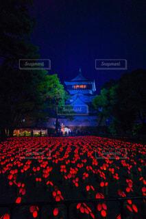 小倉城の本気の写真・画像素材[4938506]