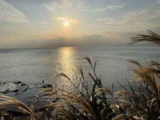 秋の夕暮れの写真・画像素材[4941820]