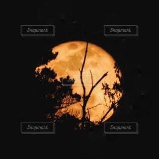 山から昇る満月の写真・画像素材[4965480]