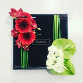 赤,白,フラワーアレンジメント,お花,フラワーデザイン