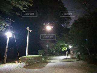 夜、お月さんを撮る写真の写真・画像素材[4945115]