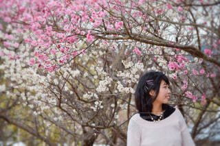 木の前に立っている人の写真・画像素材[1030871]