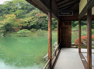 秋時雨の午後の写真・画像素材[4958335]