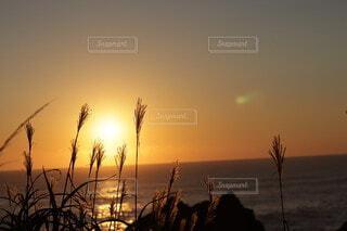 水の体に沈む夕日の写真・画像素材[4958668]