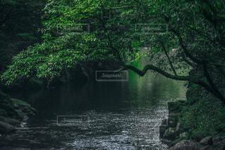 水の体の上に大きな滝の写真・画像素材[4961482]