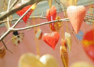 LOVE - No.327103
