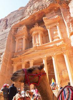 絶景,景色,旅行,ラクダ,遺跡,海外旅行,ヨルダン,ペトラ遺跡,らくだ