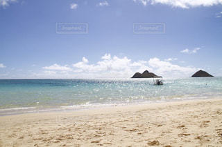 海の写真・画像素材[226693]