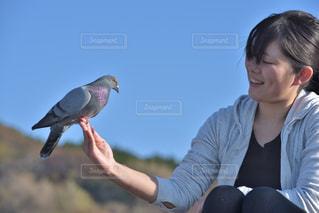 鳥を持っている人の写真・画像素材[1030638]