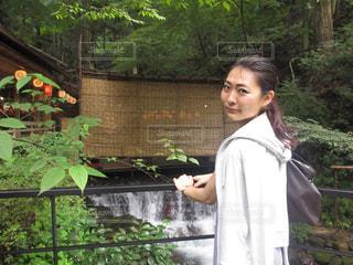 京都の写真・画像素材[662624]
