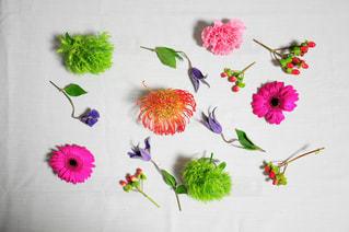 近くの花のアップの写真・画像素材[785704]