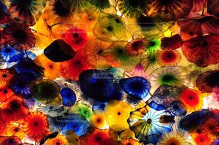 色とりどりの花のグループの写真・画像素材[785760]