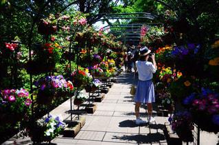 花の前に立っている女性 - No.785980