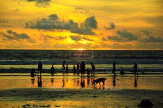 日没の前にビーチの人々 のグループ - No.786237