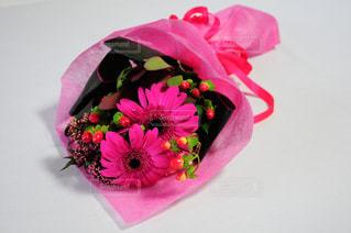 植物にピンクの花の写真・画像素材[845845]