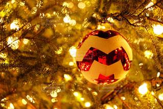 夜ライトアップされたクリスマス ツリー - No.914676