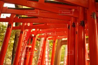 近くに赤い壁のアップの写真・画像素材[964488]