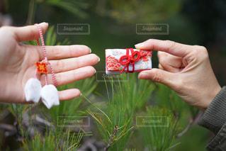 花を持っている手 - No.964489