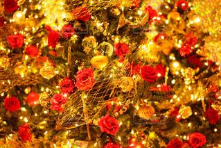 クリスマス ツリーの写真・画像素材[964518]