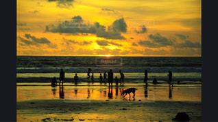 日没の前にビーチの人々 のグループ - No.981197