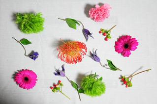 近くの花のアップ - No.1042618