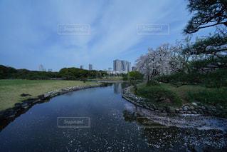 水の体を流れる川 - No.1101410