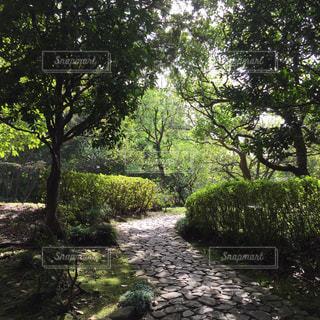 公園 - No.459183