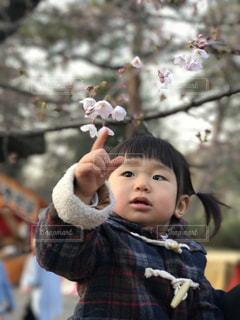 子ども,公園,春,桜,花見,女の子