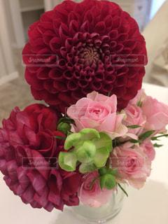 花の写真・画像素材[301038]