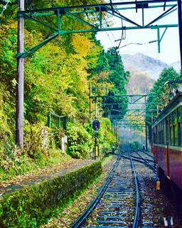 箱根の風景の写真・画像素材[1173515]