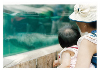 子ども,家族,親子,女の子,仲良し,赤ちゃん,動物園,フィルム,母,娘,お母さん,ツーショット
