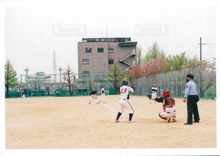 桜の写真・画像素材[455027]