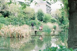 公園の写真・画像素材[485772]