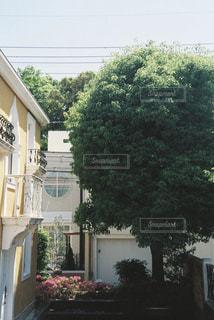 建物 - No.485781