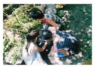夏の写真・画像素材[657849]