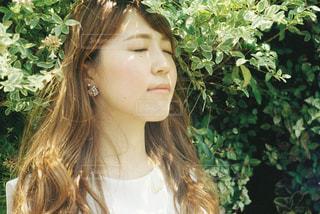 夏の写真・画像素材[674975]