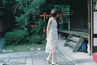 神社の写真・画像素材[702883]